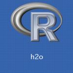 Ubuntu,R h2oパッケージのインストールの方法