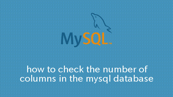 MySQL データベース内のカラム数を確認する方法