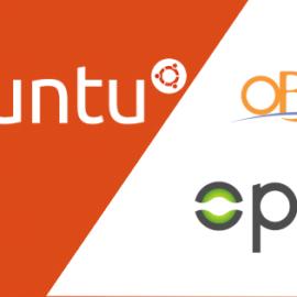 Ubuntu Server 20.04上のOpalのインストール後に行う設定
