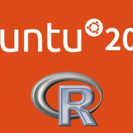 Ubuntu20.04にRをインストールする方法